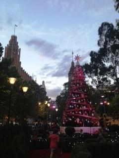 Xmas Tree, Melbourne CBD Crnr Swanston st & Collins st