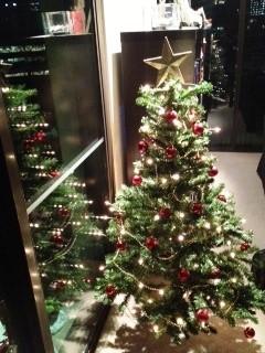 My 1st Australian Xmas tree / Il mio primo albero di Natale Italiano