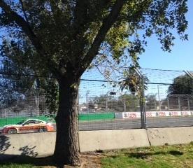 V8 at Australian Grand Prix 2013, Albert Park