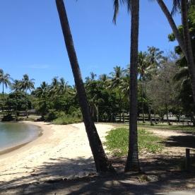 Beach in Port Douglas