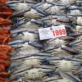 Blue crab @ Sydney Fish Market