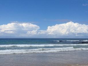 Shellharbour North Beach (Photo credit lavalendherworld.wordpress.com)