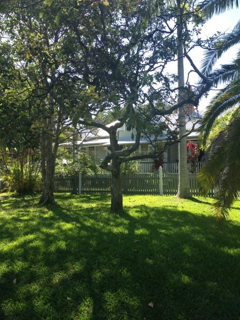 Arcadia House (Photo Credit: lavaleandherworld.wordpress.com)