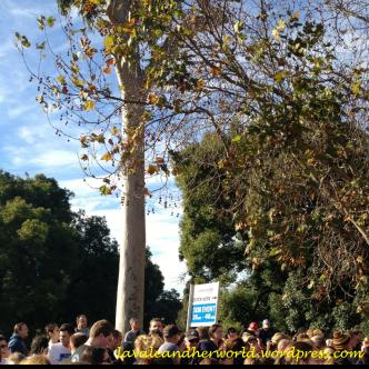 Run Melbourne - 35 - 40 Min Placement (Photo credit: lavaleandherworld.wordpress.com)