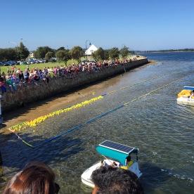 Lakes Entrance Plastic Duck Race, Gippsland, Victoria, Australia (Photo credit: lavaleandherworld.wordpress.com)