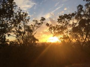 Sunset in Wagga Wagga (Photo Credit: lavaleandherworld.wordpress.com)