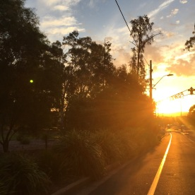Sunset in Wagga Wagga, NSW, Australia (Photo credit: lavaleandherworld.wordpress.com)