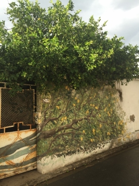 """Murales Lemon Tree"", San Sperate (Photo credit: http://www.lavaleandherworld.wordpress.com)"