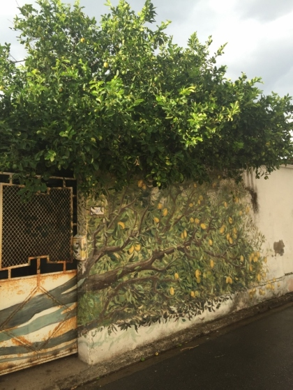 """Murales Lemon Tree"", San Sperate (Photo credit: http://www.lavaleandherworld.wordpress.com)"