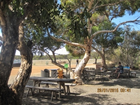 Cafe @ Raptor Domain, Kangaroo island (Photo credit: http://www.lavaleandherworld.wordpress.com)