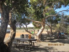 Cafe @ Raptor Domain, Kangaroo island (Photo credit: http://www.lavaleandherworld.wordpress.com)