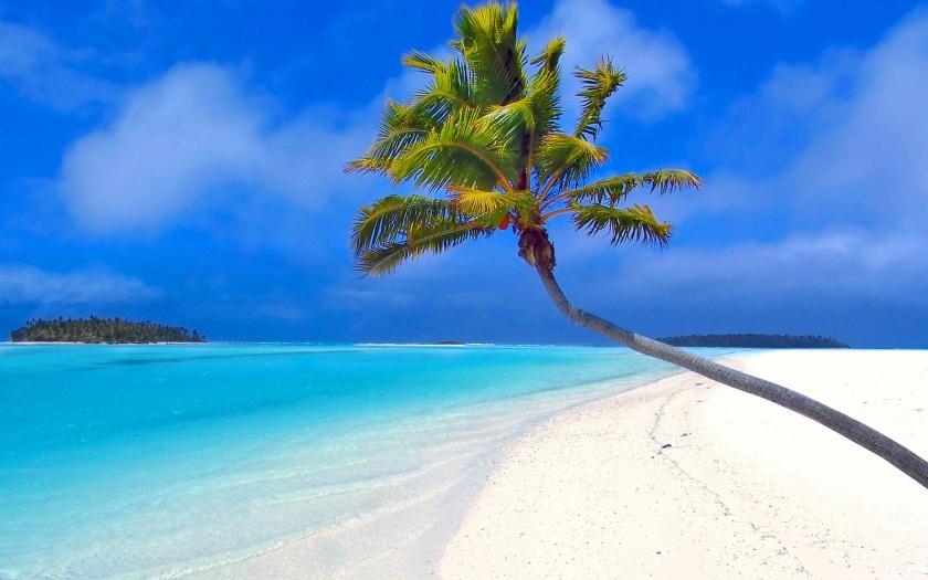 Beach paradise Seen on allwallpapersfree.blogspot.com
